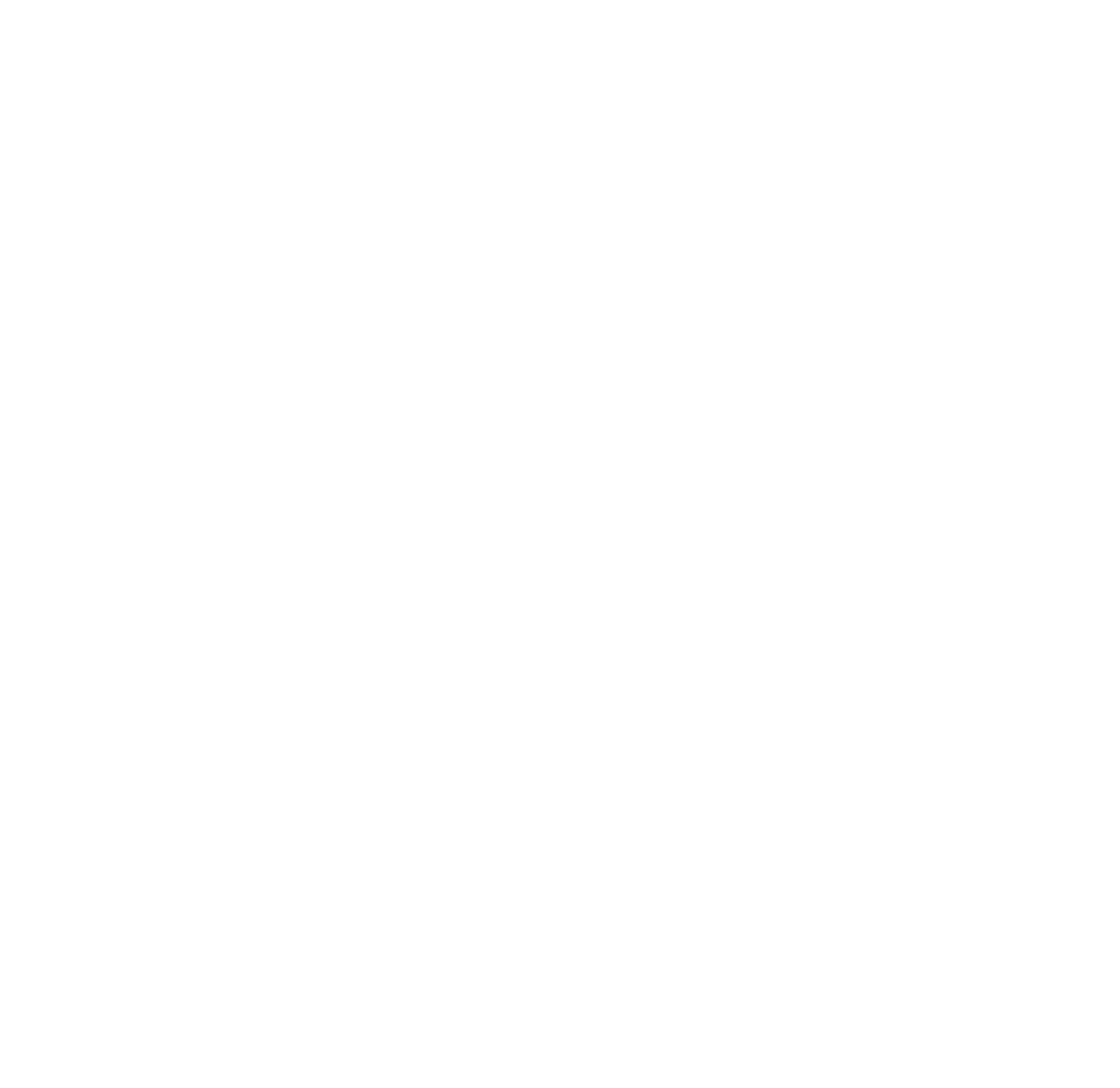 The Goodwash Company