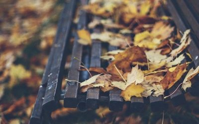 LOOKING AFTER YOURSELF THIS AUTUMN